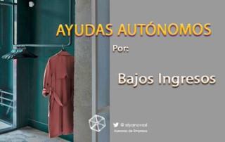 ayudas-autónomos-bajos-ingresos