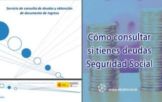 deudas-seguridad-social-consulta